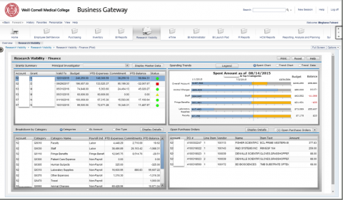Example of a Business Objects Dashboard (sensitive information has been blurred).