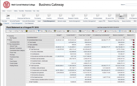 Sample of Fund Statement data and reporting in WBG (sensitive information has been blurred).